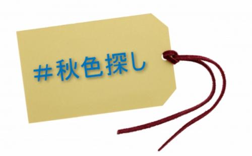 #秋色探しのハッシュタグ企画(メルカリ)